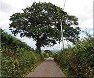 SS9907 : Ponsford Lane by Roger Cornfoot