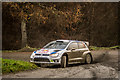 SJ0014 : Dyfnant Rally Stage (WRC) by Brian Deegan