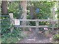 SU9486 : Permissive path into Dorney Wood from north by David Hawgood