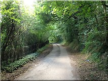 TQ6056 : Mill Lane, Basted by Chris Whippet