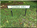 TL9674 : George Hill sign by Geographer