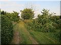TL3054 : Footpath from Longstowe by Hugh Venables