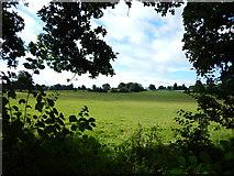 TQ1562 : Farmland View from Birchwood Lane by James Emmans
