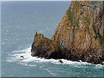 NX1430 : Gallie Craig, Mull of Galloway by David Dixon