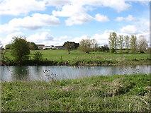 SU2798 : Camden Farm by David Purchase