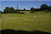 SO9969 : Farmland at Tardebigge by Stephen McKay