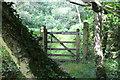 SO1700 : Gate, Sirhowy Valley Walk by M J Roscoe