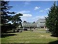 TQ1876 : The Palm House, Kew Gardens by David Smith