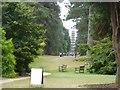 TQ1776 : The Cedar Vista, Kew Gardens by David Smith