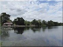 TQ4387 : The Lake, Valentines Park, Ilford by David Smith