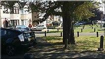 TQ2087 : Verge in Church Lane, Kingsbury by David Howard