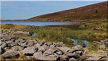 SH5150 : Llynnau Cwm Silyn northerly lake by Vivien and Geoff Crowder