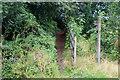 ST2198 : Hillside byway, Crumlin by M J Roscoe