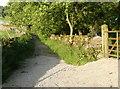 SD8172 : Horton Scar lane, Horton in Ribblesdale by Humphrey Bolton