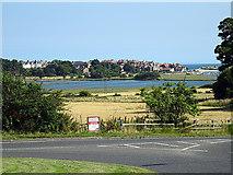 NU2410 : Alnmouth by John Lucas