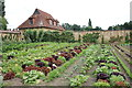 ST3918 : Kitchen garden, Barrington Court by Bill Harrison