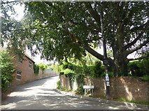 TR0653 : The corner of School Hill and Hambrook Lane, Chilham by pam fray