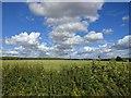TF0427 : Above Hawthorpe - East by Bob Harvey