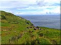 D2437 : Ruin, Antrim Coast by Mick Garratt