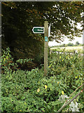 TM0174 : The Grundle Byway sign by Adrian Cable