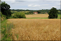 TQ6761 : Looking towards Birling Place Farm by Chris Heaton