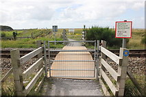 SH6214 : Pedestrian Crossing on the Cambrian Line by Jeff Buck