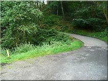SE0328 : Dry Carr Lane, Midgley by Humphrey Bolton