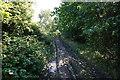 SE3105 : Penistone Rail Trail towards Dodworth by Ian S