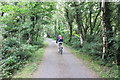 SH6313 : The Mawddach Trail near Morfa Mawddach railway station by Jeff Buck