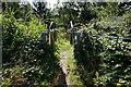 SE3105 : Penistone Rail Trail towards Dodworth Train Station by Ian S