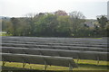 SW9852 : Solar Farm by N Chadwick