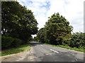 TM0889 : B1077 Haugh Road, Banham by Adrian Cable