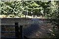 SE3005 : Footpath rail crossing at Silkstone Fall by Ian S