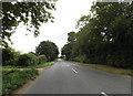 TM0889 : B1077 Haugh Road, Banham by Geographer