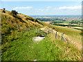 TQ4905 : Footpath through Public Access Land by PAUL FARMER