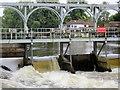 SU7781 : Sluice Gates, Mill Bank Weir by Nigel Mykura