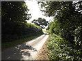 TG0723 : Kerdiston Road, Kerdiston by Geographer