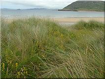 C3548 : Tullagh Bay (north east) by Carroll Pierce