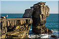 SY6768 : Pulpit Rock, Portland Bill by Oliver Mills