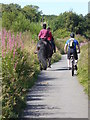 NZ2552 : Cyclist passing riders by Oliver Dixon
