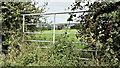 J2865 : Field gate, Sandy Lane, Tullynacross (August 2016) by Albert Bridge