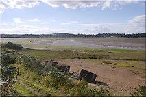 NT6378 : River Tyne by Richard Webb