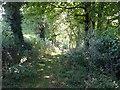 SK1442 : Deepdale Lane by Ian Calderwood
