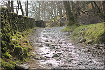 NY3204 : Elterwater - Little Langdale path by Peter Turner