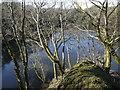 SX0555 : Floodeed Quarry Workings by Nigel Mykura