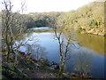 SX0555 : Walden Ponds by Nigel Mykura