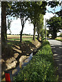 TM0271 : Newly dug ditch off the C555 Finningham Road by Adrian Cable