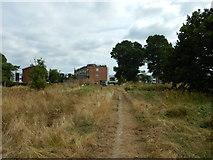 TQ1672 : Ham Lands Nature Reserve by James Emmans