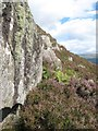 NR7276 : Amphibolite outcrop by Jonathan Wilkins