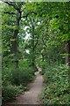TQ3764 : London Loop in Spring Park by Glyn Baker
